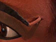 eyebrows-006S